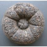 Shu puer hnízdo archivní 2004 CNNP TF 50g (vzorek z 500g hnízda)